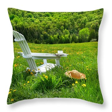 Relaxing On A Summer Chair In A Field Of Tall Grass  Throw Pillow