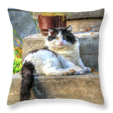 Relaxing On The Stairs Throw Pillow