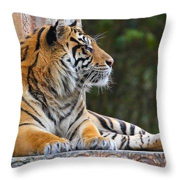 Relaxing Tiger Throw Pillow