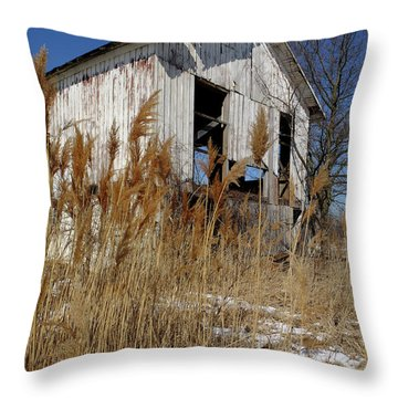 Throw Pillow featuring the photograph Relic Near Town by Scott Kingery