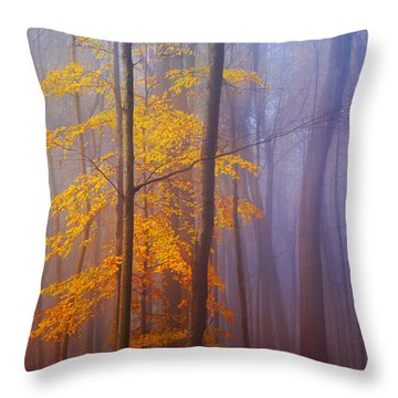Remaining Yellow Throw Pillow by Rima Biswas