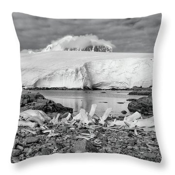 Throw Pillow featuring the photograph Remains Of A Giant by Alan Toepfer