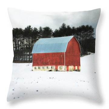 Throw Pillow featuring the photograph Rembering The Good Old Days by Julie Hamilton