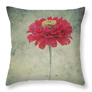 Remeber Me Throw Pillow by Angela Doelling AD DESIGN Photo and PhotoArt