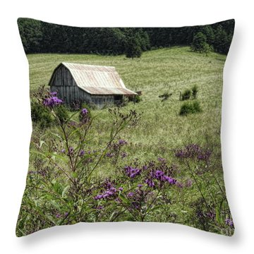 Remember When... Throw Pillow by Brenda Bostic