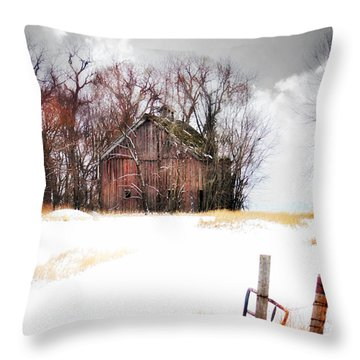 Throw Pillow featuring the photograph Remember When by Julie Hamilton