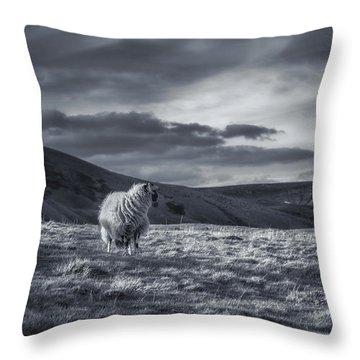 Peak District Throw Pillows
