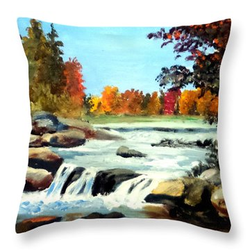 Throw Pillow featuring the painting Remembering The Little Broad River by Jim Phillips