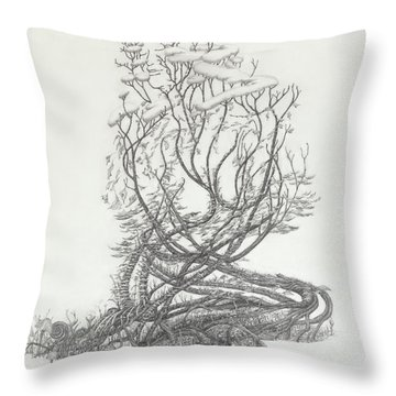 Remembrance Of Times To Come Throw Pillow