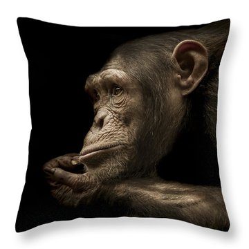 Chimpanzee Throw Pillows