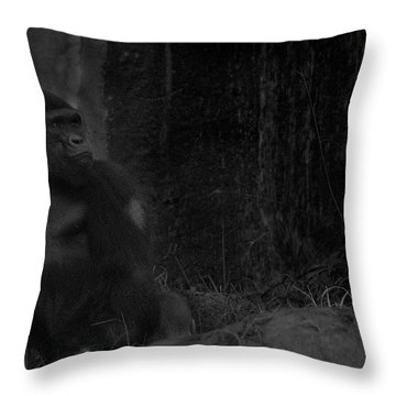 Reminiscent Of Home Throw Pillow