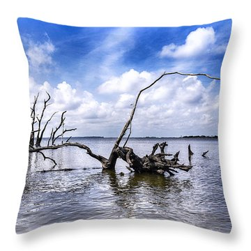 Remnants Throw Pillow by Alan Raasch