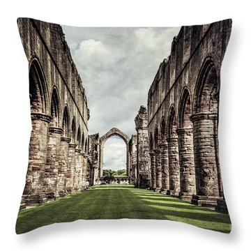 Remnants Of Beauty Throw Pillow