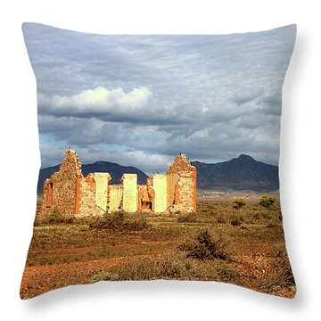 Remnants Of Life Throw Pillow