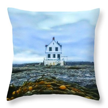 Remnants On The Rocks Throw Pillow