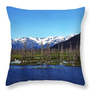 Remnants  Throw Pillow by Thomas R Fletcher