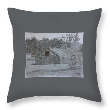 Remote Cabin Throw Pillow