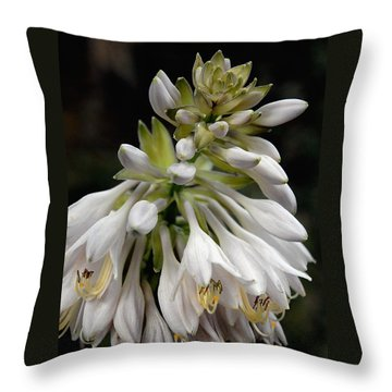 Renaissance Lily Throw Pillow