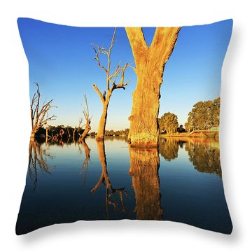 Renamrk Murray River South Australia Throw Pillow by Bill Robinson