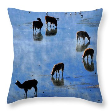 Throw Pillow featuring the photograph Rendezvous by Skip Hunt