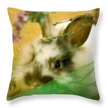Renewal Throw Pillow by Lois Bryan