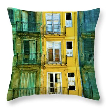 Throw Pillow featuring the photograph Renovation  by Harry Spitz
