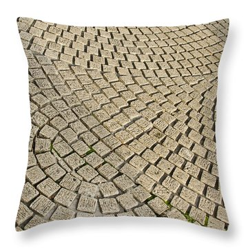 Throw Pillow featuring the photograph Repetitions by Wanda Krack