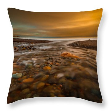 Replenishment Throw Pillow