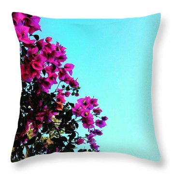 Nature  Throw Pillow by Andy Bucaille