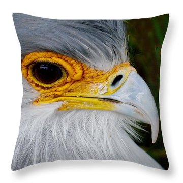Reptile Hunter Throw Pillow