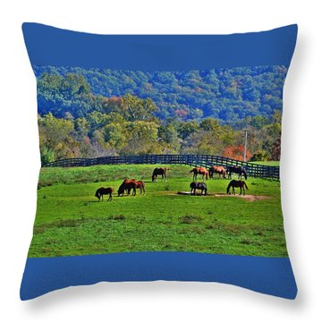 Rescue Horses Throw Pillow
