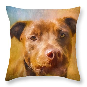 Rescued Chocolate Lab Portrait Throw Pillow
