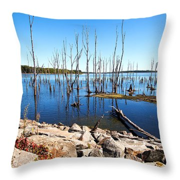 Throw Pillow featuring the photograph Reservoir by Angel Cher