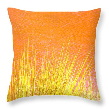 Resolute Reeds Throw Pillow