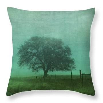 Resolution Throw Pillow by Laurie Search