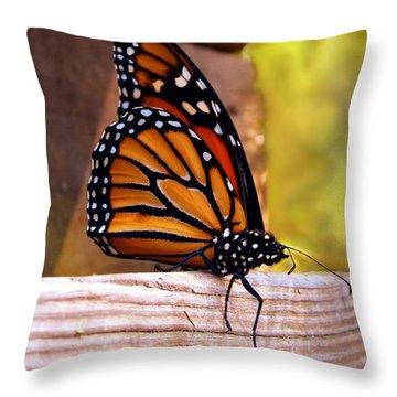 Respite Throw Pillow