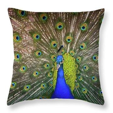 Resplendant Throw Pillow
