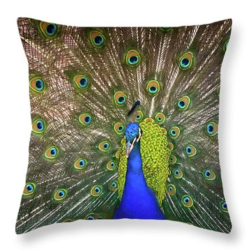 Resplendant Throw Pillow