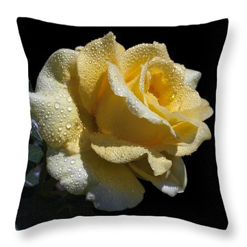 Resplendent Throw Pillow