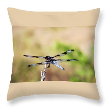 Rest Area, Dragonfly On A Branch Throw Pillow
