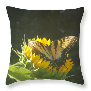 Throw Pillow featuring the photograph Rest Stop by Virginia Coyle