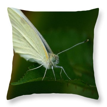 Throw Pillow featuring the photograph Resting by Cathy Harper