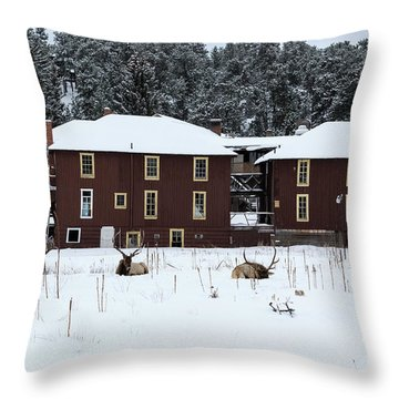 Resting Elk - 9131 Throw Pillow