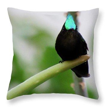Resting En Route Throw Pillow