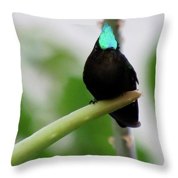 Resting En Route Throw Pillow