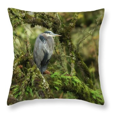 Throw Pillow featuring the photograph Resting Great Blue Heron by Angie Vogel