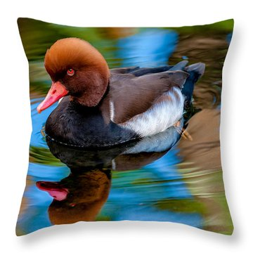 Resting In Pool Of Colors Throw Pillow by Christopher Holmes