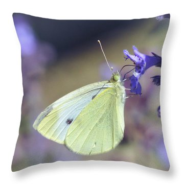 Throw Pillow featuring the photograph Resting In The Purple by Kerri Farley