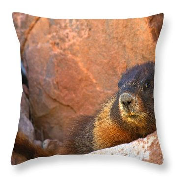 Resting In The Shade Throw Pillow