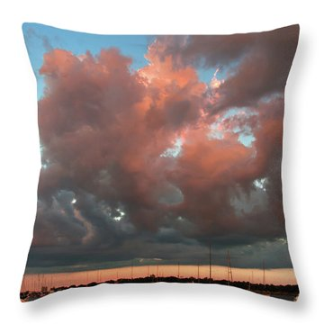 Resting In The Sunset Throw Pillow by Carolyn Dalessandro